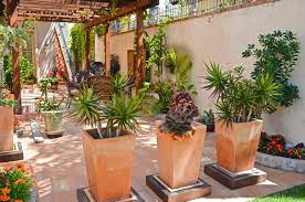 Planter Ideas Patio Mediterranean With Tropical Plants Rustic Outdoor Pots And Planters