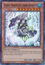 Yugioh Deck Types P by Talaya Princess Of Cherry Blossoms Decks And Tips Yugioh