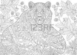 Anti Stress Adult Coloring Book Stylized Cartoon Bear Grizzly Among Blackberries Or