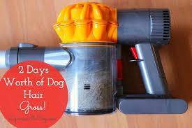 Dyson Hard Floor Tool V6 by The Best Vacuum For Pet Hair On Hard Floors Dyson V6 Slim