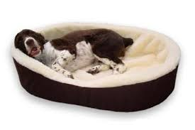 Unchewable Dog Bed by Innovative Big Fluffy Dog Bed 120 Big Fluffy Dog Bed Dog Beds For