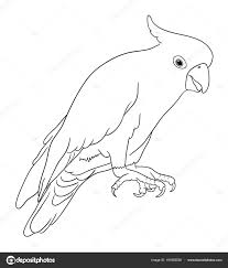 Comptage Des Oiseaux Coloriage Page Activité Cliparts Vectoriels