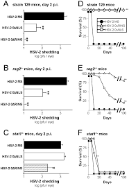Viral Shedding Herpes 2 by Herpes Simplex Virus 2 Icp0 Mutant Viruses Are Avirulent And