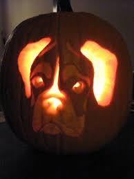 Pug Pumpkin Stencil Printable by 25 Cute Dog And Cat Halloween Costumes Best Ideas For Pet Best