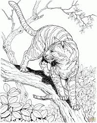 Amazing Realistic Jungle Animal Coloring Pages