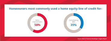 Bank of America 2017 Home ers Report