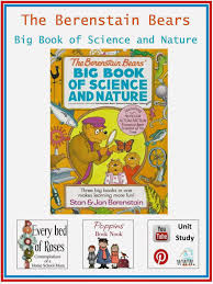 Berenstain Bears Christmas Tree Dvd by Every Bed Of Roses The Berenstain Bears U0027 Big Book Of Science And