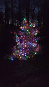Christmas Tree Shop Shrewsbury Ma by Christmas Tree Jpg