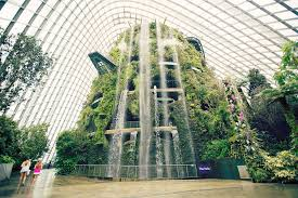 Gardens by the Bay Singapore Review
