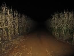 Meadowbrook Pumpkin Farm Creepy Cornfield by Image Gallery Haunted Cornfield