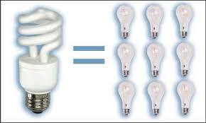 content low energy light bulbs still value for money