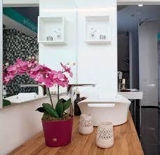 Best Plants For Bathroom Feng Shui by Spring Feng Shui Tips Bringing More Light Into Spring Home Decorating