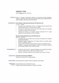 Vice President Of Sales Resume Examples Resumes Project