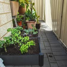 Master Gardener Raisedbed Gardens Have Many Advantages