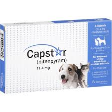 flea treatment for cats capstar flea treatment for dogs and cats 6 ct walmart