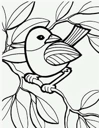 Kidscp Bird Coloring Pages Printable