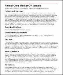 Core Qualifications For Resume Cover Letter Name New What Is Women Bodys