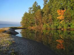 Pumpkin Patch Near Tacoma Washington by Kid Friendly Camping Near The South Sound