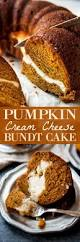 What Kinds Of Pumpkins Are Edible by Best 25 Pumpkin Cake Recipes Ideas On Pinterest Pumkin Cake