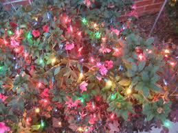 Blinking Xmas Tree Lights by Blinking Christmas Lights Wallpaper Wallpapersafari