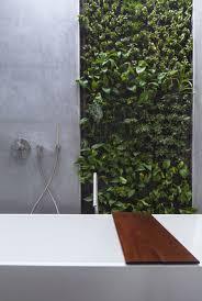 viel grün im bad badpflanzen bringen tropisches flair mit
