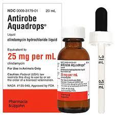 clindamycin for cats aquadrops 25 mg ml 20ml manufacture may vary
