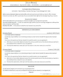 Catchy Resume Titles Title Examples Of Intended For