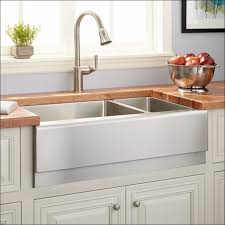 Ikea Domsjo Double Sink Cabinet by Kitchen Rooms Ideas Awesome Ikea Faucet Reviews Cheap Farmhouse