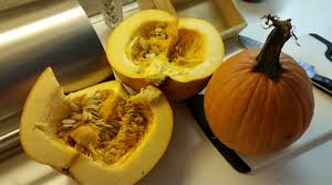 Cinderella Pumpkin Seeds Australia by Make Your Own Pumpkin Puree In 5 Easy Steps Care2 Healthy Living