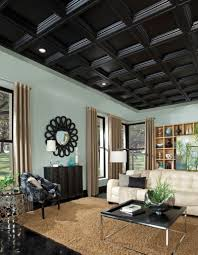 interior modern decorative drop ceiling tiles in square black