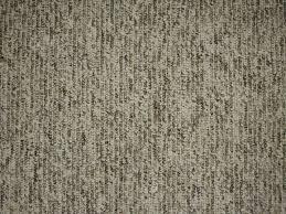 Brown Carpet Beautiful Floor