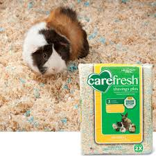 Pine Bedding For Guinea Pigs by Healthy Pet Carefresh Shavings Plus Small Pet Bedding