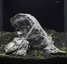 large aquarium rocks for sale selection de plantes pour le demarrage des aquariums jardien