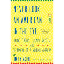 Never Look An American In The Eye A Memoir Of Flying Turtles