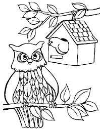 An Owl Bird House Coloring Pages