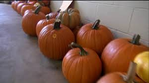 Pumpkin Patches Maryland Heights Mo by 3 Teens Arrested For Stealing Dozens Of Pumpkins Fox2now Com