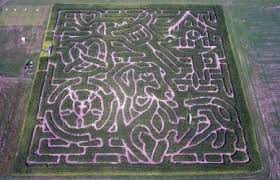 Milwaukee Pumpkin Patch Lubbock by United States Corn Mazes Corn Mazes America