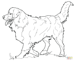 Free Printable Cute Dog Coloring Pages Online Click Mountain Pdf Full Size