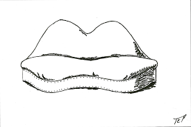 Mae West Lips Sofa Salvador Dali 1937 by Chaircards Elliott Peace The Iarc Blog