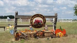 Pumpkin Patches Near Temple Texas by The Robinson Family Farm Temple Having Fun In The Texas Sun