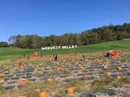 Pumpkin Patch Pittsburgh 2017 by Fall Festival Harvest Valley Farm Market U0026 Bakery