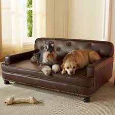 Enchanted Home Pet Library Sofa Dog Bed Dog