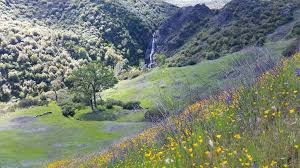 Best Trails in Knoxville Wildlife Area California