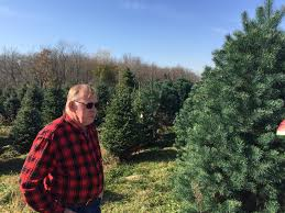 Ticks On Christmas Trees 2015 by Agriculture U2013 Research At Purdue