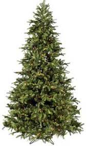 There Are Many Different Options To Consider When Choosing Christmas Trees You Can Choose A Small Or Large Tree Thin Wide Real