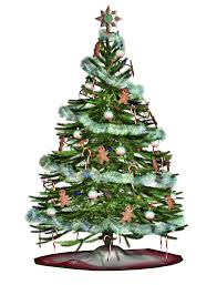 Balsam Christmas Trees Real by Willingboro Township Christmas Tree Collection Trashpro