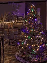 55319 Pretty Christmas Tree Gif 83be51d616bcc58a6829d81828be77a5 36cc45d886f5c8bb344e8d1f876bee11