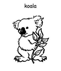 Koala Coloring Pages 31
