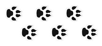 cat paw prints cat prints best 25 cat paw tattoos ideas on paw print