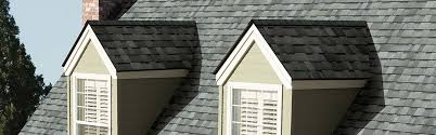 Hanson Roof Tile Texas by Home Buddys Roofing
